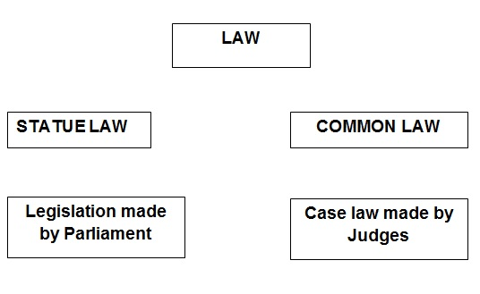 Statute and Common Law Difference Final